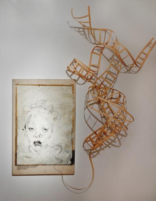 "Lauren A. Toomer ""DNA"" Installation, 2013"