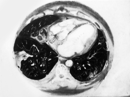 Rendering a CT Scan, 2014, Graphite on paper