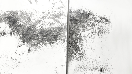 Fort Mason diptych, 2016, Graphite on paper, 30.5 x 15 in