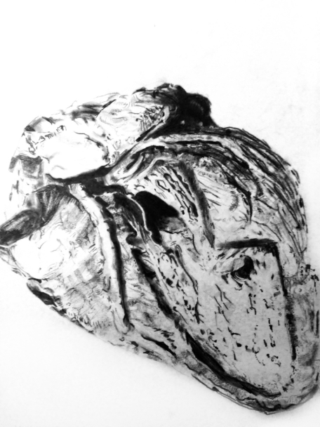 Drawing Life (human heart), 2014, Graphite on paper
