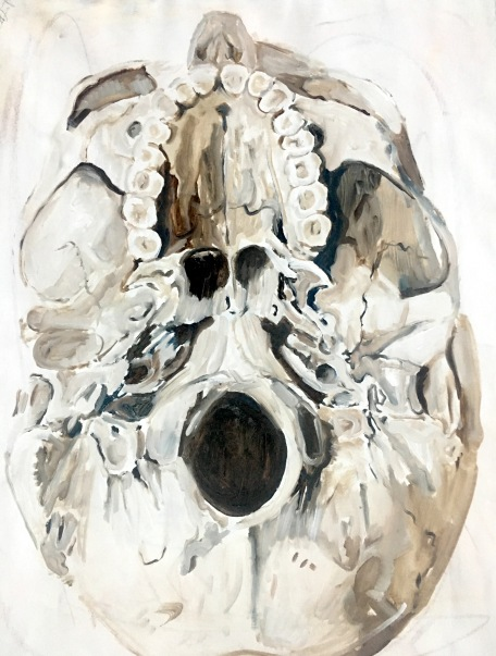 Skull (r), 2017, Acrylic, oil, on paper18 x 24 inches
